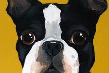 Boston Terrier <3 / Boston terriers