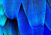I love the blue colour / Blue makes me feel good=)