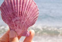 summer, beach, sea