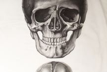 EVanilla : Artistic Anatomy