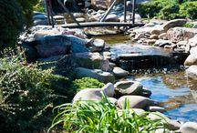 Вода в ландшафтном дизайне / Декоративные пруды, водоемы, ручьи, каскады