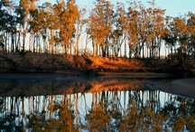 Echuca-birthplace and childhood