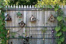 Outdoors / Birdhouses