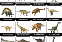 Dinosaures & Créatures
