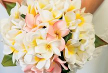 Tropical Frangipani / This board is inspired by our Tropical Frangipani Enticing Candle