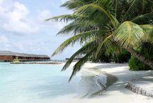 Tropické kraje