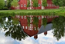 Barns / Barns make me think of hard working families. / by Mary Ann Clark