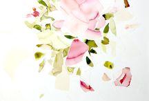 acuarelas de la artista AIDA SUBIRÀ / flores, cactus