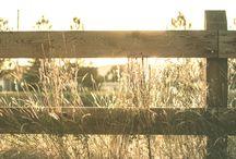 Fencing Contractors Adelaide / List of Top10 Fencing Contractors in Adelaide