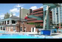 Parks & Recreation / by Clayton Missouri