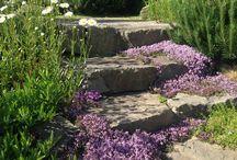 Outdoor stairs. Уличные ступени. Made by СпецПаркДизайн.