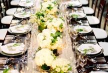 Wedding - Reception / by Maddy