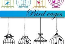 Bird cages & houses / by Rhonda Potts