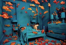 Sandy Skoglund / by Anna Ball