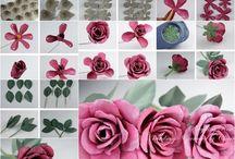 Roosa Ruusu