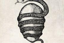 serpent egg spiral