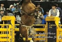 Saddle Bronc Riding / Saddle Bronc Riding