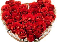 Fresh Flowers / Florist in Pune, Online Flower Delivery in Pune - Cheap Prices. Pune Florist, Pune Online Florist, Online Florist in Pune, Flower Delivery in Pune, India, Same Day Flower Delivery in Pune, Online Florist in Pune, Online Flower Shop in Pune,India, Cheap Flowers to Pune.
