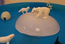 animals with ice / by Amy Louis