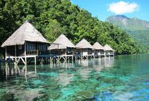 Maluku Mollucas / Foto from all around Maluku Indonesia let,s see and enjoy it