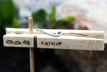 etichette per vasi