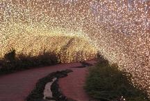 Lights / by Tasha Pritchard