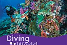 Top 10 Scuba Diving Books and DVDs of 2015 / The bestselling scuba diving books and DVDs of 2014. Sealife guides, dive guides, shipwreck guides, etc.