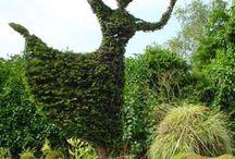 7-) Topiary