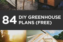 green house planters