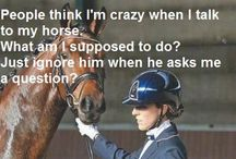 Quotes ( Horses)