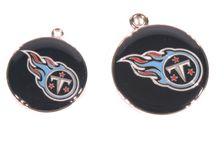 Tennessee Titans Dogs / Tennessee Titans Dog Collar: Clothes, Apparel, Lead & ID Tags - Hot Dog Collars