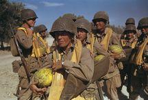 WWII TUNISIA