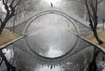 Forced Perspective / by Curated Caregiving