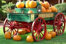 Happy Fall, Halloween and Thanksgiving / When September/October arrive...I start to get very happy!!!  Does that mean it gets cold...well,? Maybe...but it does mean that the super hot....starts to cool off some....  We don't really have a true fall here...sometime we have a little....but, I love fall decor...it makes me feel cooler anyway....  I like all the fall holidays...and can't think of a better way to end the fall season than with Thanksgiving...getting to be thankful at Thanksgiving is always a favorite of mine!   / by Michelle Asbell