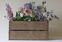 for Sweetpea Flowers  / Hi Marianne,   Few ideas for you!