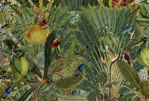 botanical pics