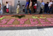 Alfombras de flores SITGES 2016