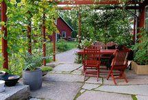 Hagedesign / Utvalg av ideer til hagedesigner
