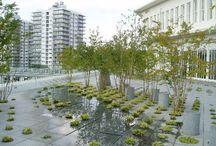 zielen na dachu