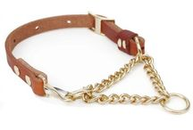 Dog Collars by Type / The kind of dog collar that you buy of course depends on the main purpose of the collar. But whatever your objective for buying a dog collar, we are sure to have the best dog collar types on our online website.