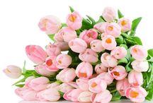 FC - Bouquet