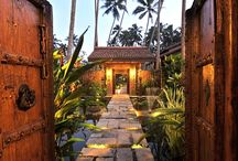 Gardens / Lush gardens