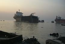 Ship Recycling / by International Maritime Organization