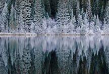 My favourite seasons....