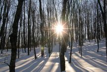 L'hiver en campagne! / L'hiver à notre Gîte L'Évasion Gîte et Refuges situé près de Mont Tremblant, Québec!