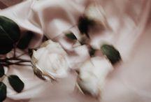 flowers; aes