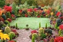 Gardens / by Lisa Meade