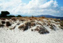 Spiagge Budoni e dintorni / Spiagge beaches Sardegna