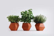 Gardening / by Tania Sidiqi