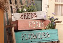 Gardening/Outdoors ideas / by Debi Hewitt
